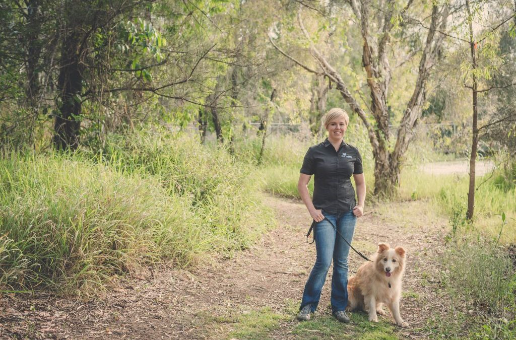 How To Start And Grow A Successful Dog Training Business